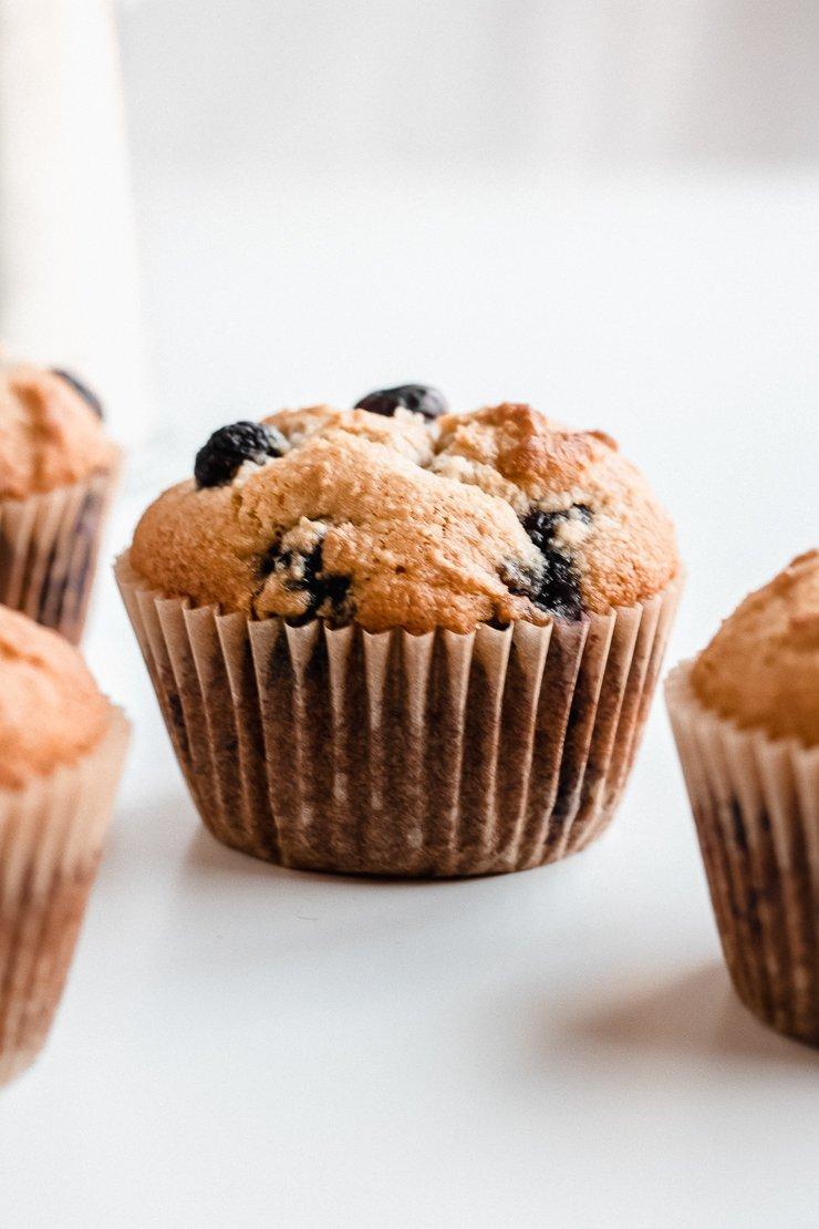 healthy paleo blueberry muffins