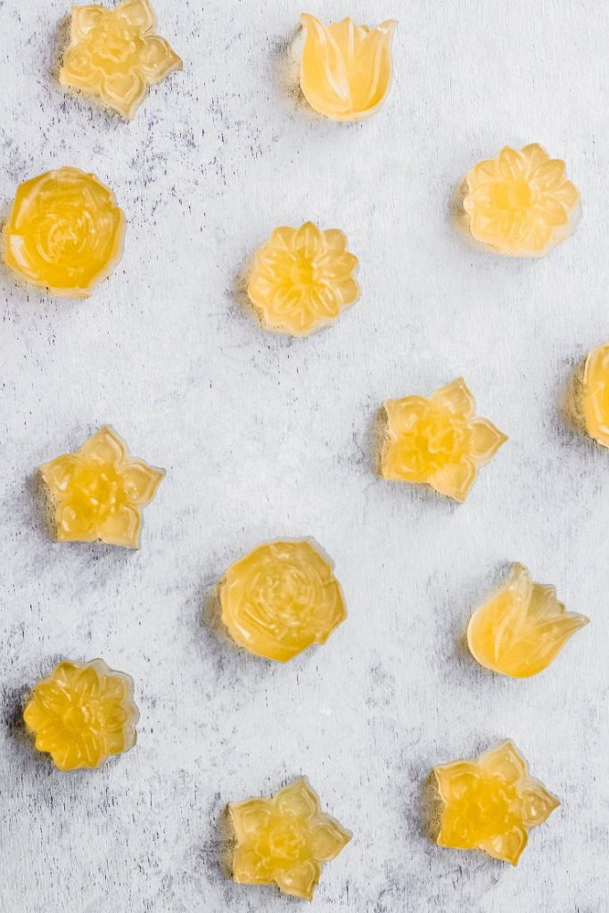 protein gummies